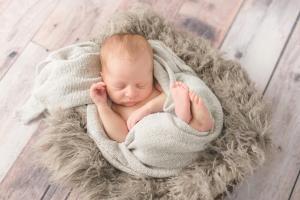 photographer albany ny newborn in basket