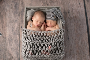 twin newborn photo