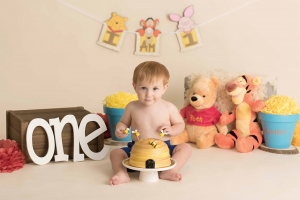 albany ny photographer - winnie the pooh cake smash photo