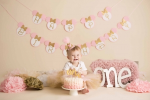 photographer albany ny - minnie mouse cake smash photo