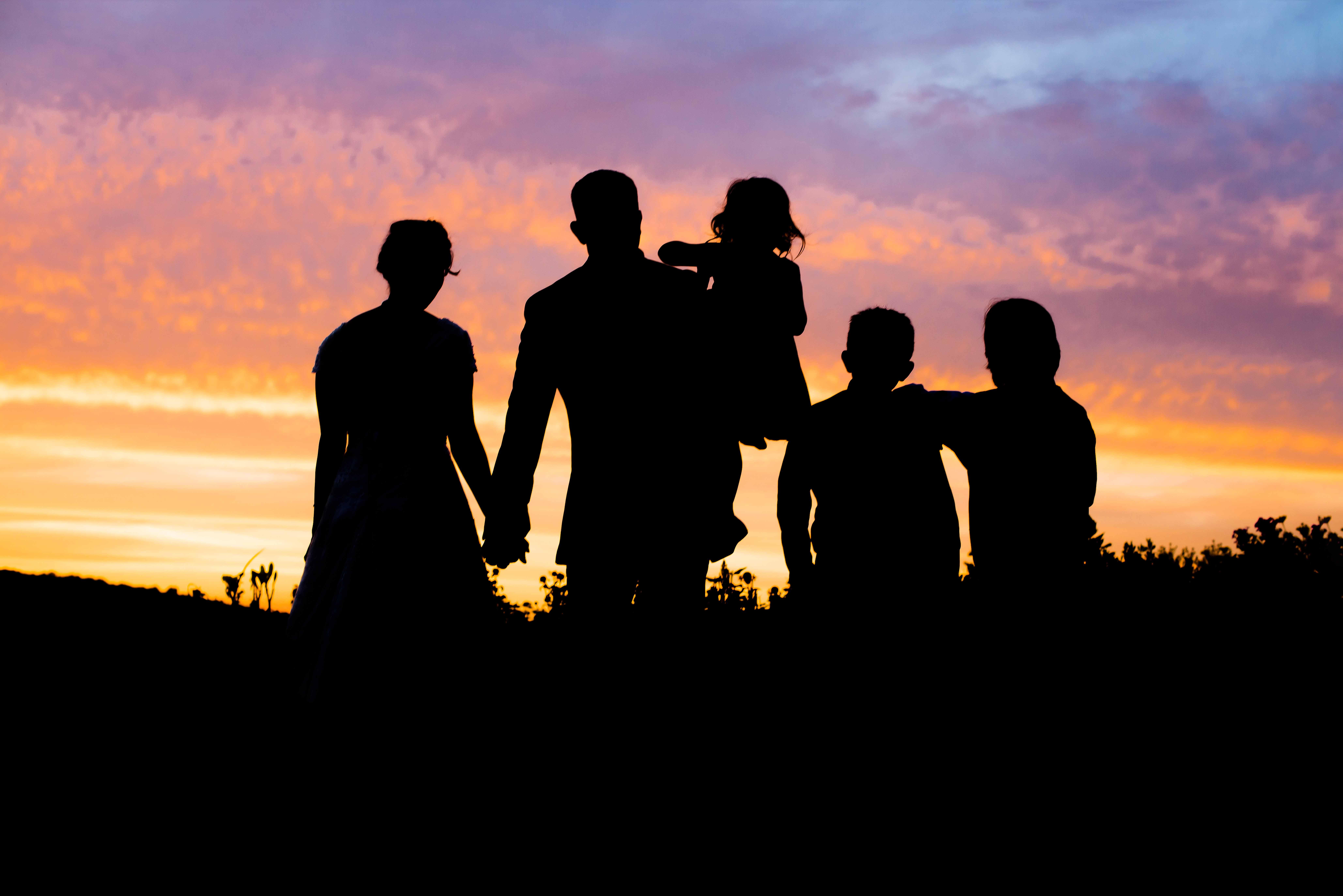 family photographer albany ny silhouete