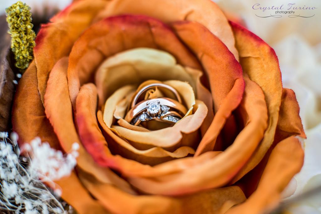 wedding photography albany ny