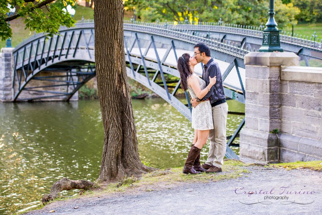 albany ny wedding photographer -engagement photo