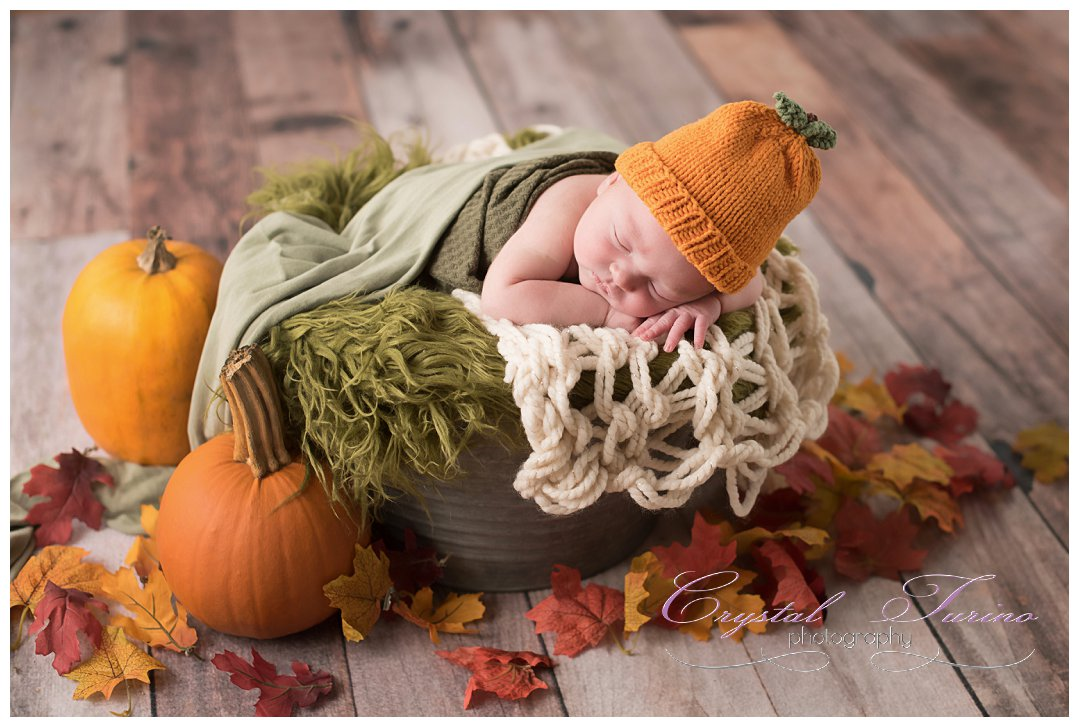 fall newborn photo with pumpkins