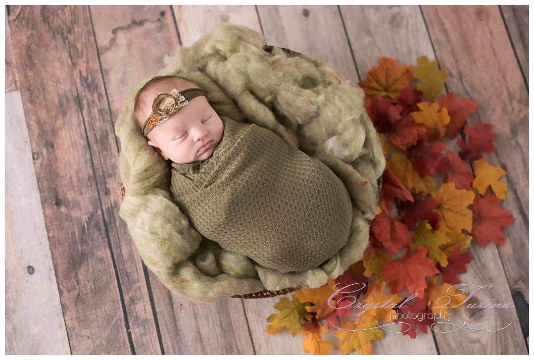 newborn photography albany ny