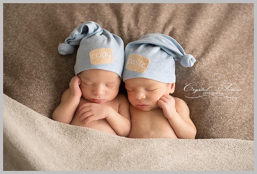 twin newborn photographer albany ny