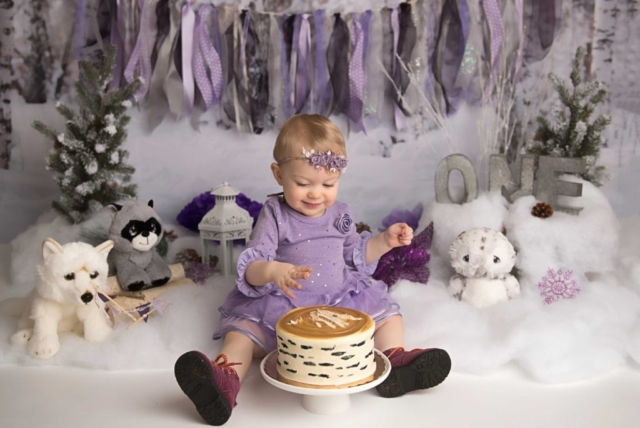 winter wonderland cake smash photography